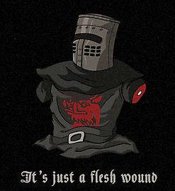 Just_a_flesh_wound_mate