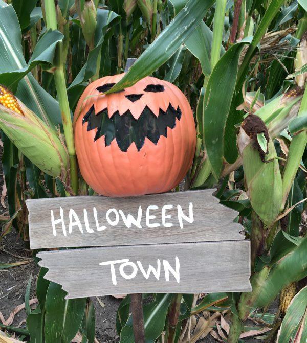 halloween-town-scarecrow-mask-1