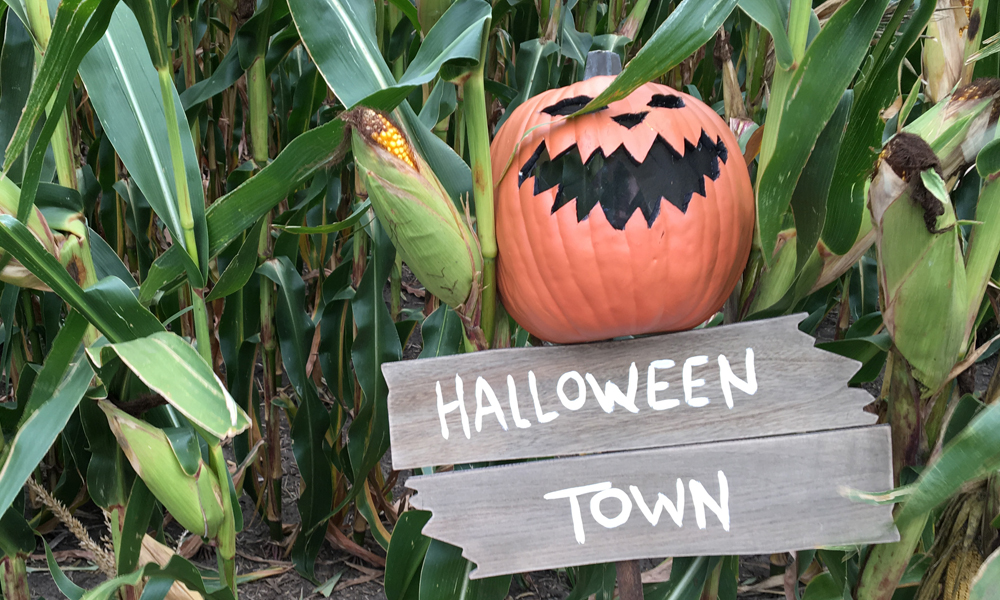 halloween-town-scarecrow-mask-feature