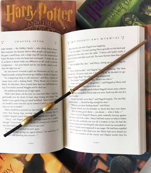 Harry Potter Wands Oxford 1